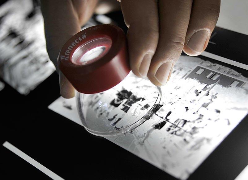 Etikettando Stampa Etichette Personalizzate